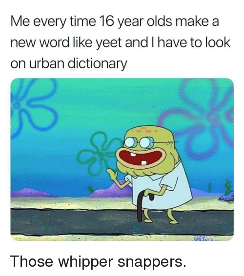 Urban Dictionary: Me every time 16 year olds make a  new word like yeet and I have to look  on urban dictionary Those whipper snappers.