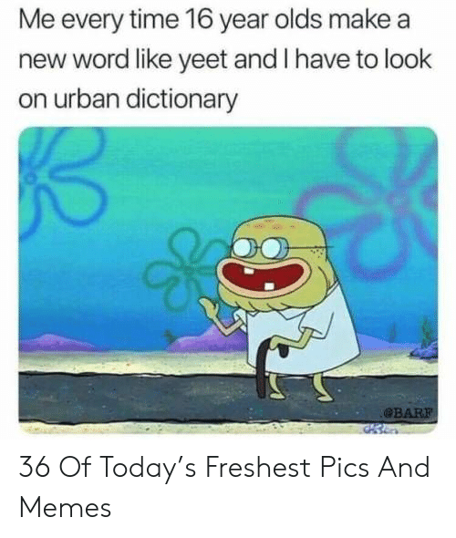 Dictionary: Me every time 16 year olds make a  new word like yeet and I have to look  on urban dictionary  BAR 36 Of Today's Freshest Pics And Memes
