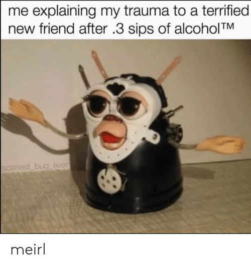 new friend: me explaining my trauma to a terrified  new friend after .3 sips of alcoholTM  scariest bug ever meirl