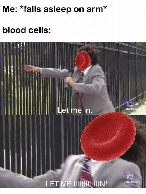 Blood, Arm, and Let Me In: Me: *falls asleep on arm*  blood cells:  Let me in.  LET ME IIIAlIN!eul