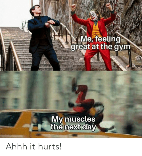 muscles: Me, feeling  great at the gym  My muscles  the next day Ahhh it hurts!