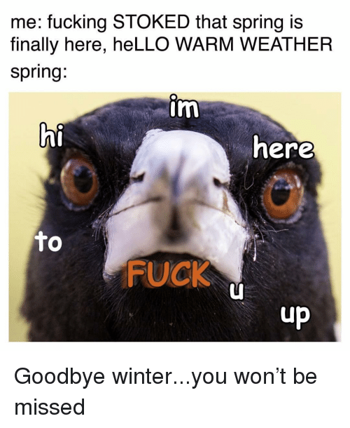 Fucking, Hello, and Memes: me: fucking STOKED that spring is  finally here, heLLO WARM WEATHER  spring.  im  hi  here  FUCK  up Goodbye winter...you won't be missed