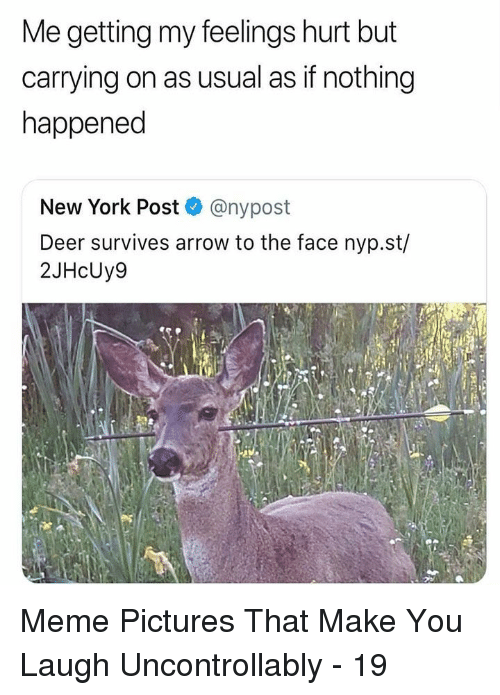 Deer, Meme, and New York: Me getting my feelings hurt but  carrying on as usual as if nothing  happened  New York Post @nypost  Deer survives arrow to the face nyp.st/  2JHcUy9 Meme Pictures That Make You Laugh Uncontrollably - 19
