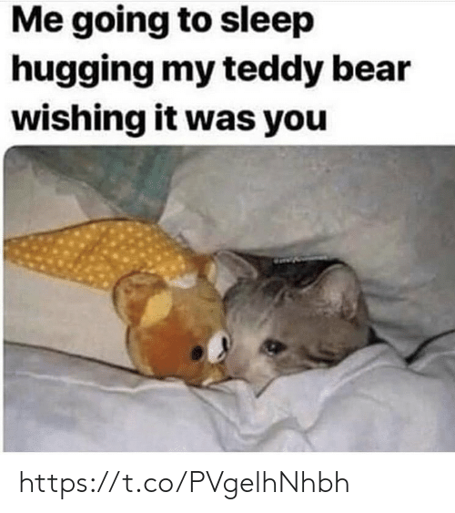 Teddy: Me going to sleep  hugging my teddy bear  wishing it was you https://t.co/PVgelhNhbh