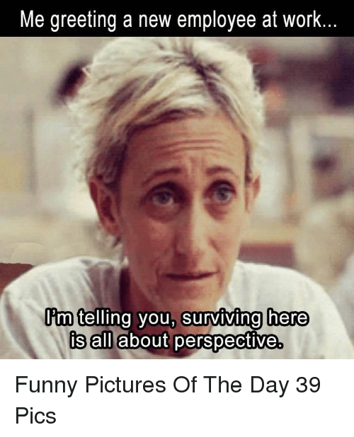 Funny, Work, and Pictures: Me greeting a new employee at work  im telling you, surviving here  s alilabout perspective Funny Pictures Of The Day 39 Pics