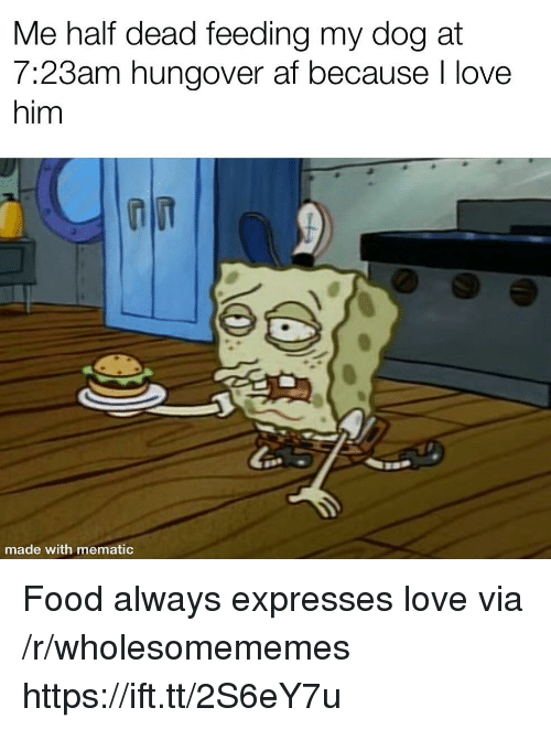 Af, Food, and Love: Me half dead feeding my dog at  7:23am hungover af because l love  him  made with mematic Food always expresses love via /r/wholesomememes https://ift.tt/2S6eY7u