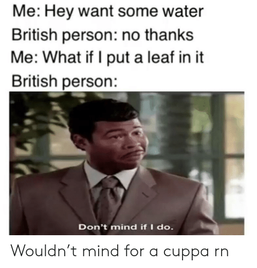 leaf: Me: Hey want some water  British person: no thanks  Me: What if I put a leaf in it  British person:  Don't mind if I do. Wouldn't mind for a cuppa rn