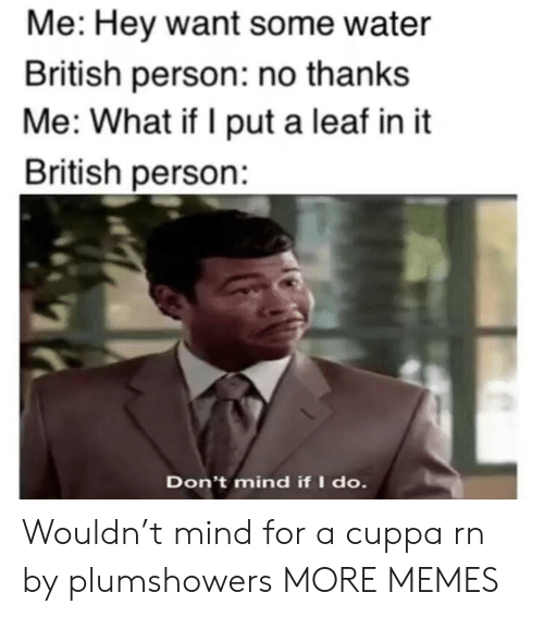 leaf: Me: Hey want some water  British person: no thanks  Me: What if I put a leaf in it  British person:  Don't mind if I do. Wouldn't mind for a cuppa rn by plumshowers MORE MEMES