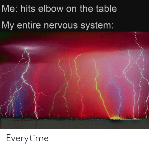 Reddit, Table, and Elbow: Me: hits elbow on the table  My entire nervous system: Everytime
