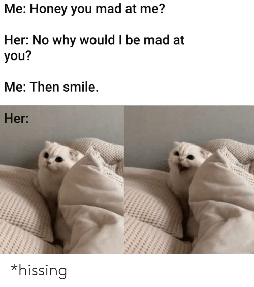 Reddit, Smile, and Mad: Me: Honey you mad at me?  Her: No why would I be mad at  you?  Me: Then smile.  Her: *hissing