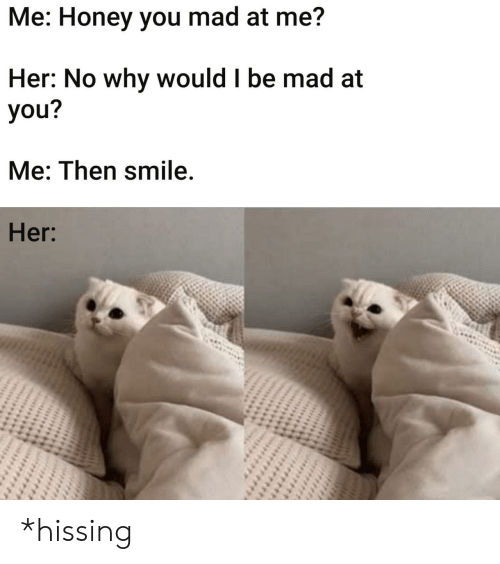 Smile, Mad, and Her: Me: Honey you mad at me?  Her: No why would I be mad at  you?  Me: Then smile.  Her: *hissing