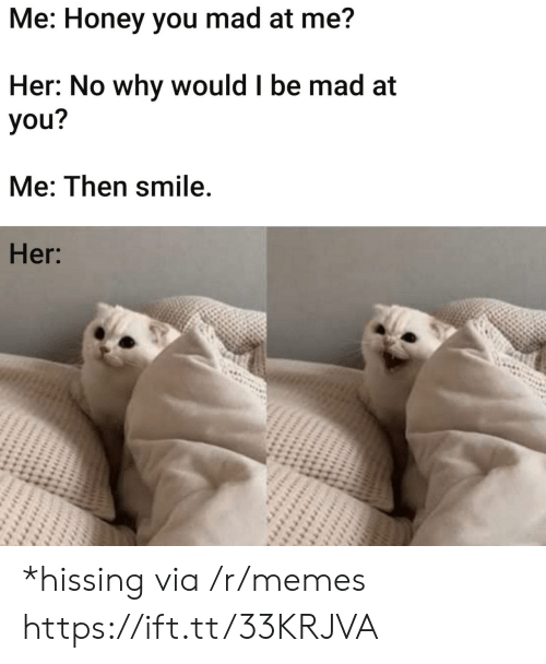 Memes, Smile, and Mad: Me: Honey you mad at me?  Her: No why would I be mad at  you?  Me: Then smile.  Her: *hissing via /r/memes https://ift.tt/33KRJVA