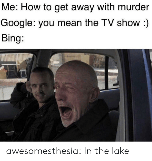 How To Get: Me: How to get away with murder  Google: you mean the TV show :)  Bing: awesomesthesia:  In the lake