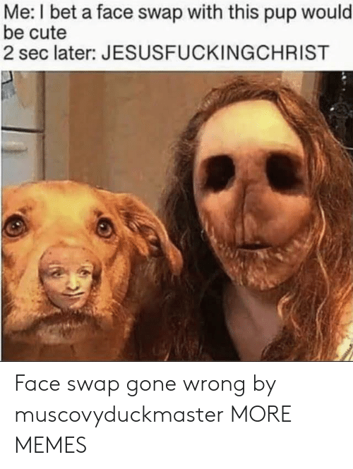 Face Swap: Me: I bet a face swap with this pup would  be cute  2 sec later: JESUSFUCKINGCHRIST Face swap gone wrong by muscovyduckmaster MORE MEMES