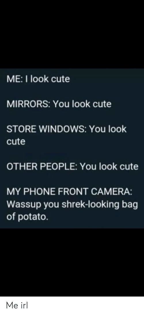 Front Camera: ME:I look cute  MIRRORS: You look cute  STORE WINDOWS: You look  cute  OTHER PEOPLE: You look cute  MY PHONE FRONT CAMERA:  Wassup you shrek-looking bag  of potato. Me irl