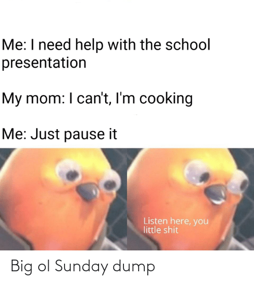 Sunday: Me: I need help with the school  presentation  My mom: I can't, I'm cooking  Me: Just pause it  Listen here, you  little shit Big ol Sunday dump