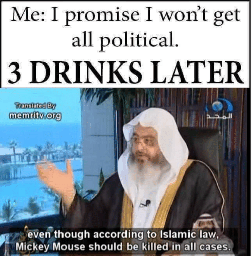 3 Drinks Later: Me: I promise I won't get  all political  3 DRINKS LATER  ranslatediBY  memritv org  even though according to Islamic law,  Mickey Mouse should be killed in all cases.