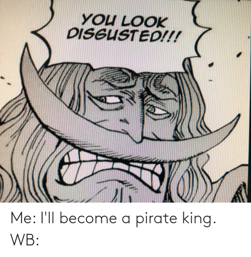 Pirate: Me: I'll become a pirate king. WB: