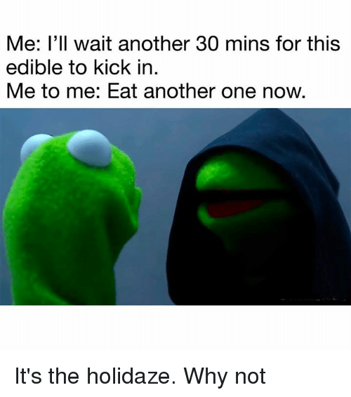 Another One, Memes, and Holidaze: Me: I'll wait another 30 mins for this  edible to kick in.  Me to me: Eat another one now. It's the holidaze. Why not