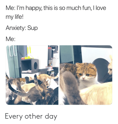 Me I'm Happy This Is So Much Fun I Love My Life! Anxiety Sup