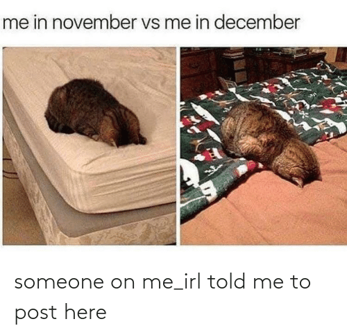 november: me in november vs me in december someone on me_irl told me to post here
