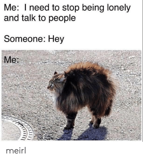 MeIRL, Lonely, and Stop: Me: Ineed to stop being lonely  and talk to people  Someone: Hey  Me: meirl