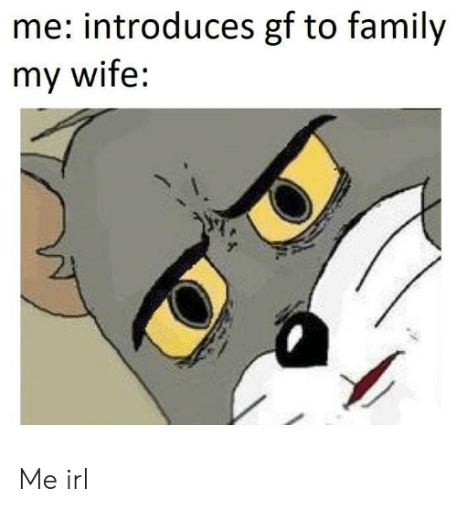 Family, Wife, and Irl: me: introduces gf to family  my wife: Me irl
