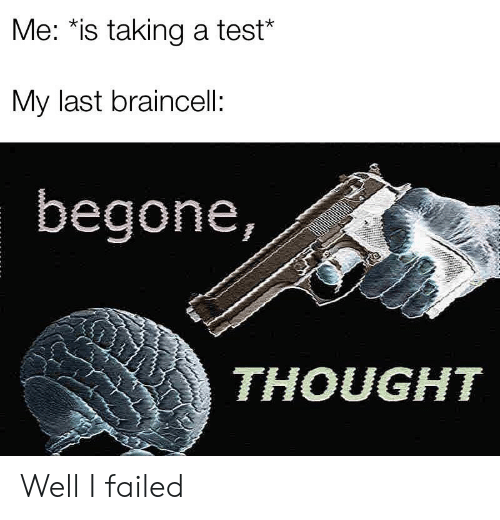 Test, Thought, and Well: Me: *is taking a test*  My last braincell:  begone,  THOUGHT Well I failed