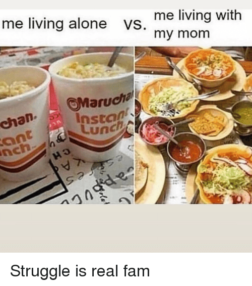 Being Alone, Fam, and Funny: me living with  my mom  me living alone  VS  chan Insta  ant Lunch Struggle is real fam