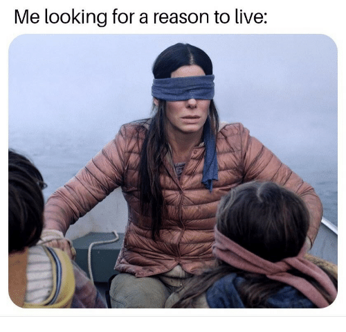 Reason To Live: Me looking for a reason to live: