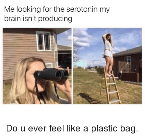 Funny, A Plastic Bag, and Plastic: Me looking for the serotonin my  brain isn't producing Do u ever feel like a plastic bag.