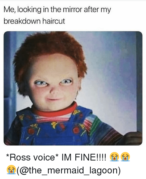 Haircut, Memes, and Mirror: Me, looking in the mirror after my  breakdown haircut *Ross voice* IM FINE!!!! 😭😭😭(@the_mermaid_lagoon)