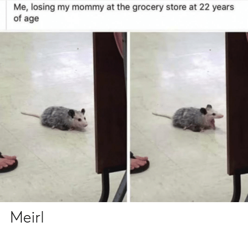 MeIRL, Store, and Losing: Me, losing my mommy at the grocery store at 22 years  of age Meirl