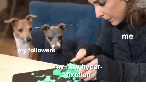 New, Follower, and  Hyper: me  m  y follower  s  new hyper  fixation  my