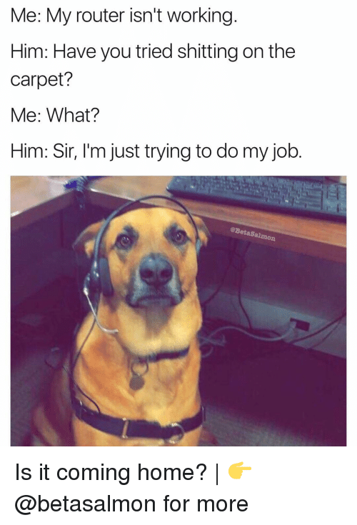 Memes, Home, and Router: Me: My router isn't working  Him: Have you tried shitting on the  carpet?  Me: What?  Him: Sir, l'm just trying to do my job.  @BetaSal  mon Is it coming home? | 👉 @betasalmon for more