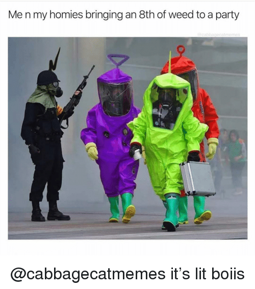 Lit, Party, and Weed: Me n my homies bringing an 8th of weed to a party @cabbagecatmemes it's lit boiis