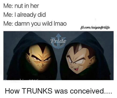 Conceivment: Me: nut in her  Me: I already did  Me: damn you wild lmao How TRUNKS was conceived....