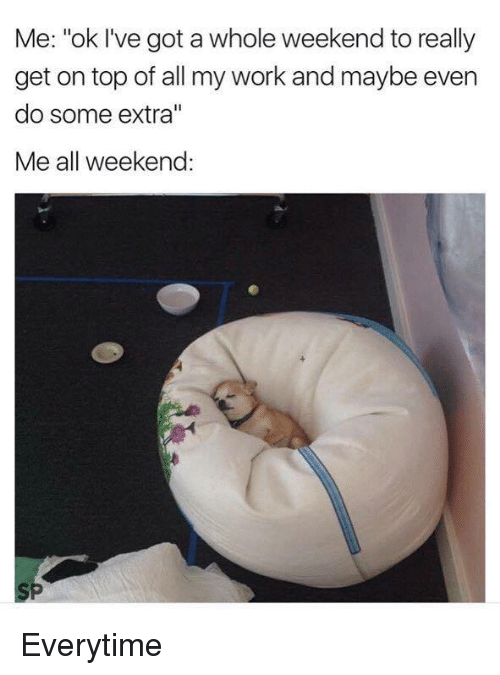 """Dank, 🤖, and Weekender: Me: """"ok I've got a whole weekend to really  get on top of all my work and maybe even  do some extra""""  Me all weekend: Everytime"""