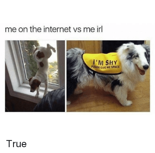 Internet, True, and Space: me on the internet vs me irl  'M SHY  PLEASE GIVE ME SPACE <p>True</p>