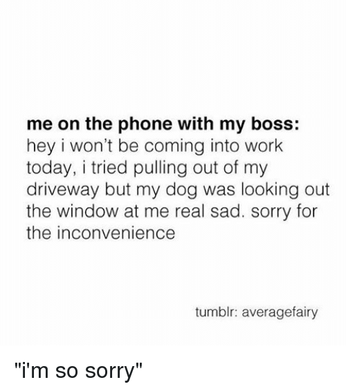 "sorry for the inconvenience: me on the phone with my boss:  hey i won't be coming into work  today, i tried pulling out of my  driveway but my dog was looking out  the window at me real sad. sorry for  the inconvenience  tumblr: averagefairy ""i'm so sorry"""