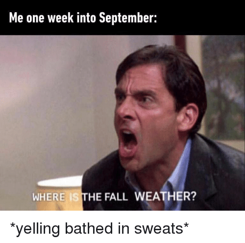 Fall, Memes, and The Fall: Me one week into September:  WHERE IS THE FALL WEATHER? *yelling bathed in sweats*