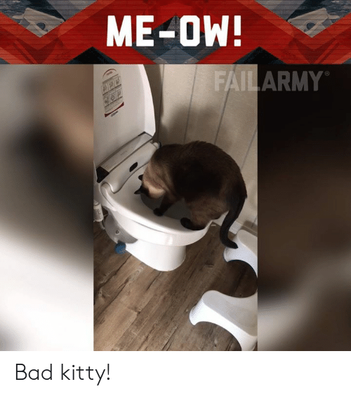 Bad, Memes, and Bad Kitty: ME-OW  AILARMY Bad kitty!