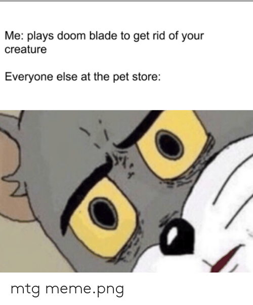 Meme Png: Me: plays doom blade to get rid of your  creature  Everyone else at the pet store: mtg meme.png