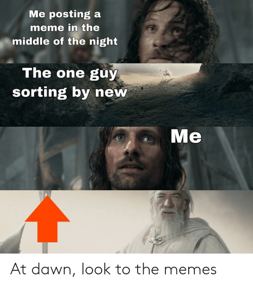 Dawn: Me posting a  meme in the  middle of the night  The one guy  sorting by new  Me At dawn, look to the memes
