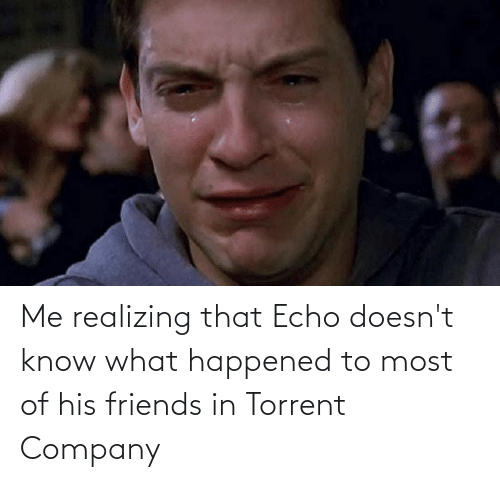 Torrent: Me realizing that Echo doesn't know what happened to most of his friends in Torrent Company