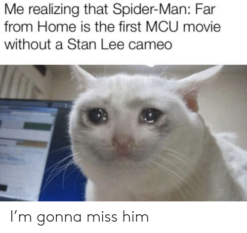 cameo: Me realizing that Spider-Man: Far  from Home is the first MCU movie  without a Stan Lee cameo I'm gonna miss him