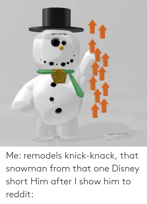 knick knack: Me: remodels knick-knack, that snowman from that one Disney short Him after I show him to reddit: