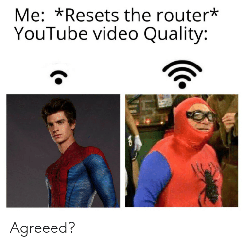 Youtube Video: Me: *Resets the router*  YouTube video Quality: Agreeed?