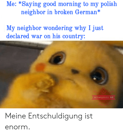 polish: Me: *Saying good morning to my polish  neighbor in broken German*  My neighbor wondering why I just  declared war on his country:  u/babydoll bd Meine Entschuldigung ist enorm.