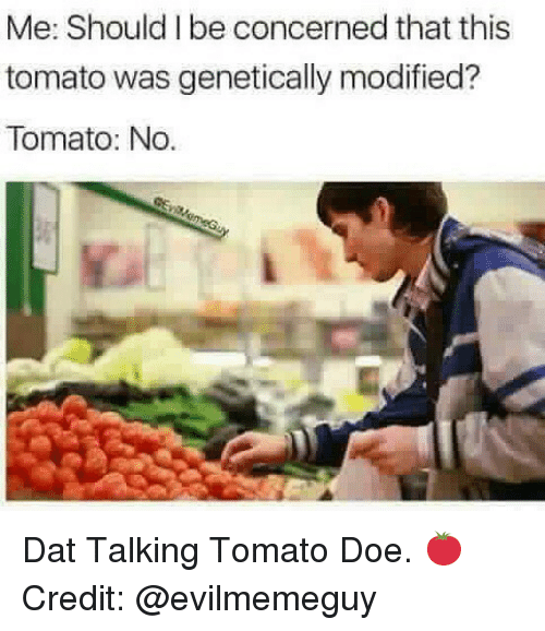 tomatos: Me: Should I be concerned that this  tomato was genetically modified?  Tomato: No. Dat Talking Tomato Doe. 🍅 Credit: @evilmemeguy